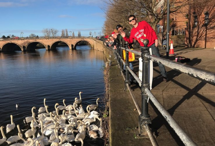 Feeding the swans in Worcester